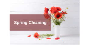 Image for post Introducing the Spring-Cleaning Package for Indoor Air Quality